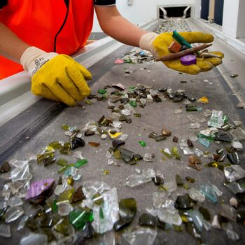 Contamination being removed from the glass recovery sort line
